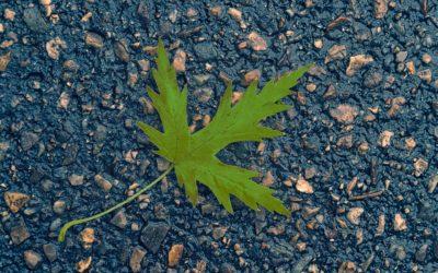 Asphalt: The Environmentally Conscious Choice